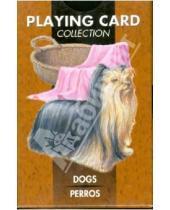 Картинка к книге Карты игральные - Карты игральные. Собаки