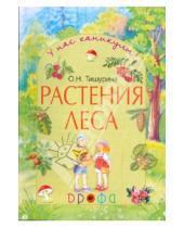 Картинка к книге Николаевна Ольга Тишурина - Растения леса