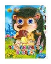 Картинка к книге Ольга Корнеева - Чем питается зверек?
