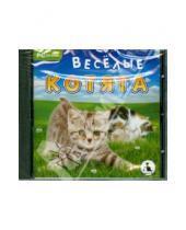 Картинка к книге Игры для всей семьи - CDpc Веселые котята