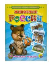 Картинка к книге Обучающие карточки - Обучающие карточки. Животные России