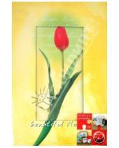 "Картинка к книге Pioneer - Фотоальбом на 300 фотографий ""Beautiful flower"" (LM-4R300)"