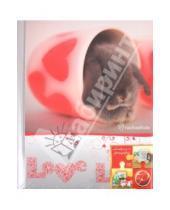 "Картинка к книге Pioneer - Фотоальбом 20 магнитных страниц 23х28 ""Love"" (12945 LM-SA10)"