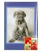 "Картинка к книге Pioneer - Фотоальбом на 100 фотографий ""Lovely animals"" (LM-4R100CPPM)"