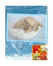 "Картинка к книге Pioneer - Фотоальбом на 100 фотографий ""Winter rabbits"" (LM-4R100)"