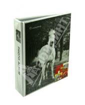 "Картинка к книге Pioneer - Фотоальбом на 36 фотографий ""Animal kingdom"" (LM-4R36)"