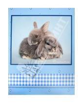 "Картинка к книге Pioneer - Фотоальбом на 20 магнитных страниц ""Sweet couple"" (LM-SA10)"