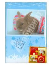 "Картинка к книге Pioneer - Фотоальбом на 100 фотографий ""Winter rabbits"" (LM-4R100CPPM)"