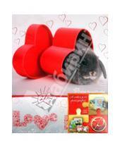 "Картинка к книге Pioneer - Фотоальбом на 200 фотографий ""Love"" (LM-4R200)"