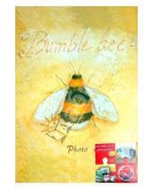 """Картинка к книге Pioneer - Фотоальбом на 300 фотографий """"Golden bug"""" (LM-4R300CPPM)"""