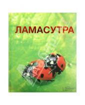 Картинка к книге Досуг - Ламасутра
