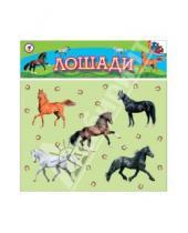 Картинка к книге Игры на магнитах - Лошади (2284)