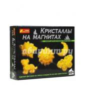 Картинка к книге Ранок - Кристаллы на магнитах (желтые) (12126001Р)
