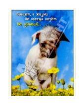 Картинка к книге Сфера - З-057/Не унывай/открытка двойная