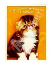 Картинка к книге Сфера - З-069/Нескромный вопрос/открытка двойная