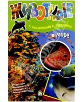 Картинка к книге Книжки с наклейками/познавательные - Животные: В море (с наклейками и заданиями)