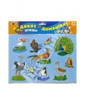 Картинка к книге Игры на магнитах - Дикие и домашние птицы