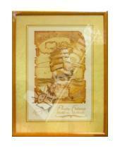 Картинка к книге Pioneer - Фоторамка (001) (6266)