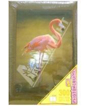 Картинка к книге Millennium - Фотоальбом МR46300/PHG (Ассорти, фламинго)