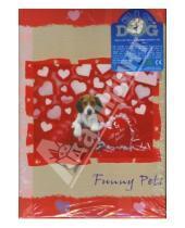 Картинка к книге Big Dog - Фотоальбом AV46304/2 (Funny Pets) (7524)