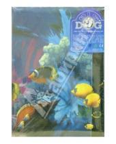 Картинка к книге Big Dog - Фотоальбом 8846 AV46304/2 (Dolphins)