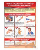 Картинка к книге К. В. Миронов К., С. Миронов Н., В. Латчук - Первая медицинская помощь при термических ожогах