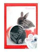 "Картинка к книге Pioneer - Фотоальбом 20 магнитных страниц ""Lovely animals"" (LM-SA10BB/2)"