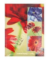 """Картинка к книге Pioneer - Фотоальбом на 100 фотографий """"Freur-de-lis2"""" (LM-6R100PPBB)"""