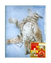 "Картинка к книге Pioneer - Фотоальбом на 100 фотографий ""Tiger"", ассортимент (LM-4R100)"