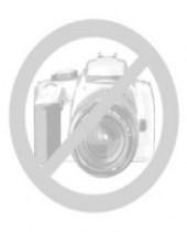 Делопроизводство: Практическое пособие/ Издание 10-е, перераб. и дополн. - без обложки