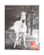 "Картинка к книге Pioneer - Фотоальбом на 200 фотографий. ""Animals black & white"" (LM-4R200)"