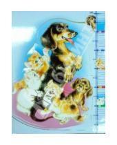 Картинка к книге Мягкий пазл - Мягкий пазл-14. Ростомер. Котята и щенки