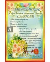 Картинка к книге Стезя - 14Т-026/Свидетельство свекрови