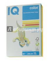 Картинка к книге Mondi business paper - Бумага для печати IQ COLOR MIX INTENSIVE, 5 цветов, 250 листов (RB02)