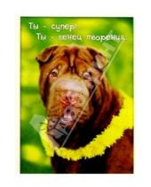 Картинка к книге Сфера - З-062/Ты - супер/открытка двойная