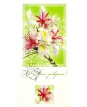 Картинка к книге Сфера - ЦЕ-110/День рождения/открытка двойная