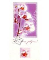 Картинка к книге Сфера - ЦЕ-111/День рождения/открытка двойная