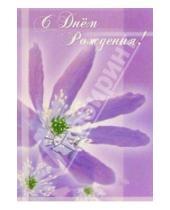 Картинка к книге Сфера - ЦС-118/День рождения/открытка двойная