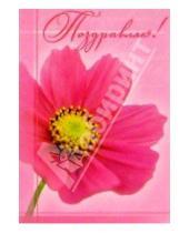 Картинка к книге Сфера - ЦС-120/Поздравляю/открытка двойная