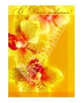 Картинка к книге Сфера - ЦС-121/День рождения/открытка двойная