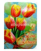 Картинка к книге Сфера - ЦС-315/День рождения/открытка-вырубка двойная
