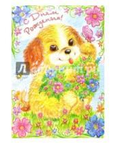 Картинка к книге Сфера - ДР-433/День Рождения/открытка двойная