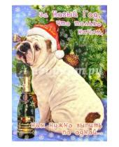Картинка к книге Сфера - СН-413/Новый год/открытка двойная