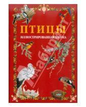 Картинка к книге Белый город - Птицы. Иллюстрированная азбука