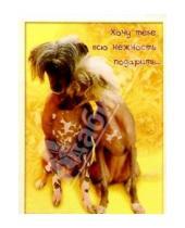 Картинка к книге Сфера - З-065/Нежность/открытка двойная