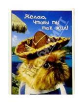 Картинка к книге Сфера - З-071/День рождения/открытка двойная